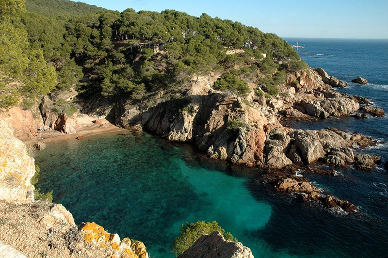Hotels In Calella Costa Brava
